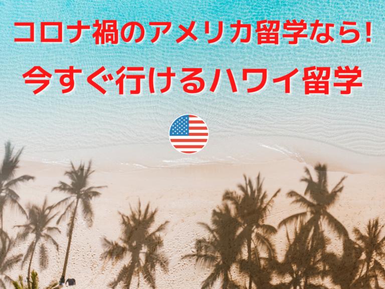 名古屋 コロナ ハワイ